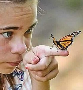 Monarch Butterfly Release performed by young girl.